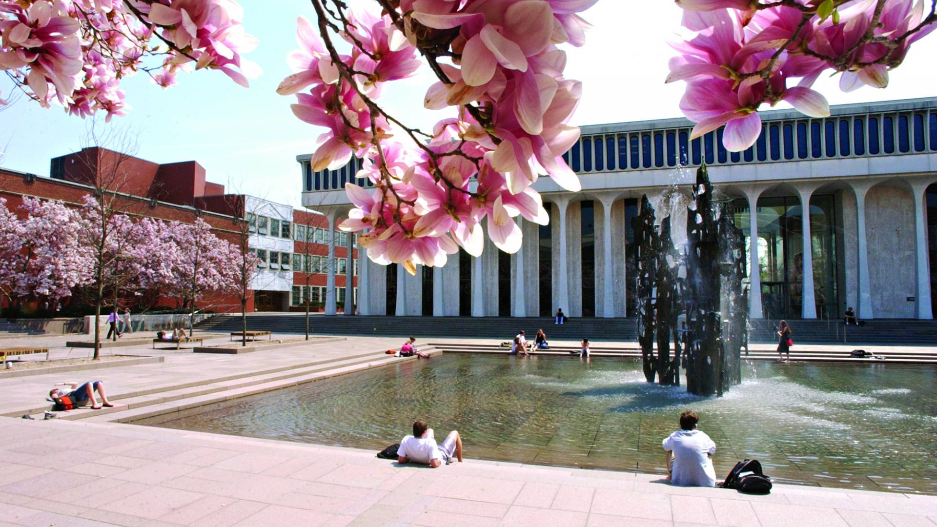 Photo of tree blossoms framing a view of Scudder Plaza and its fountain in front of Robertson Hall on the Princeton campus.