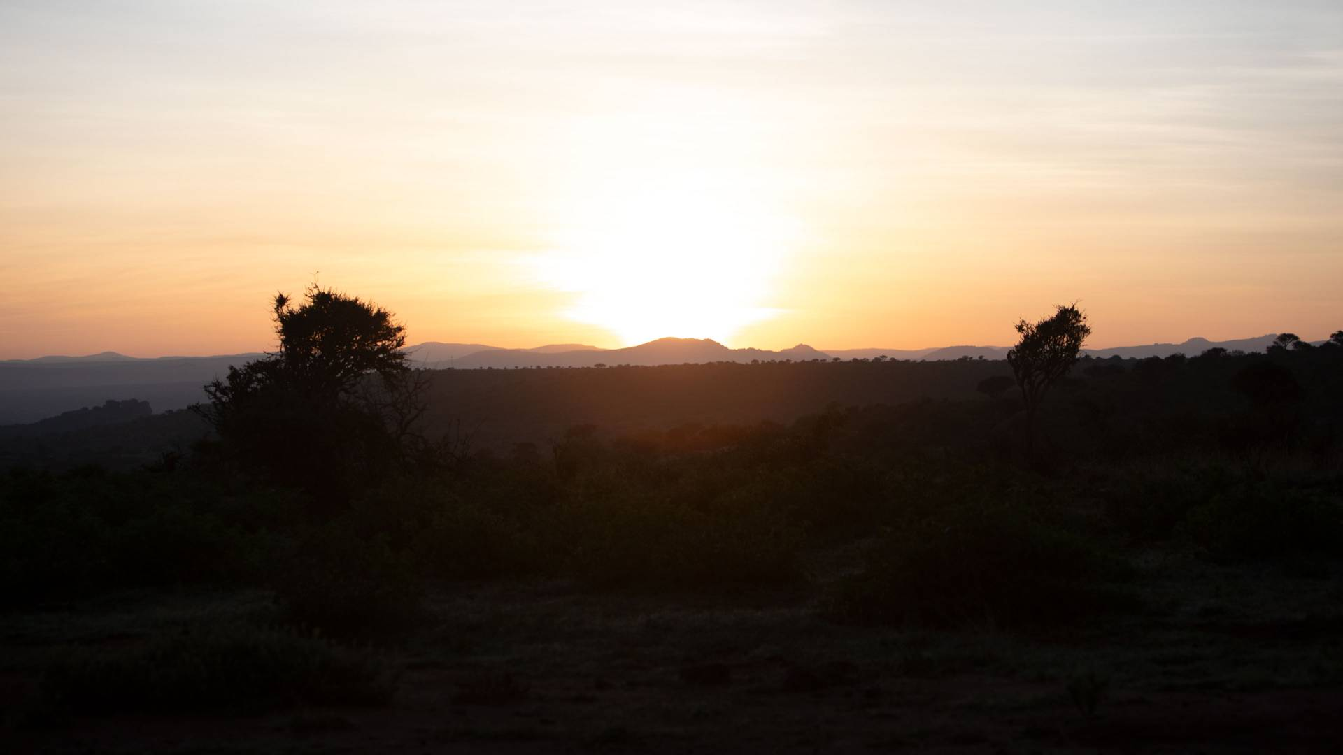 Sunrise at Mpala