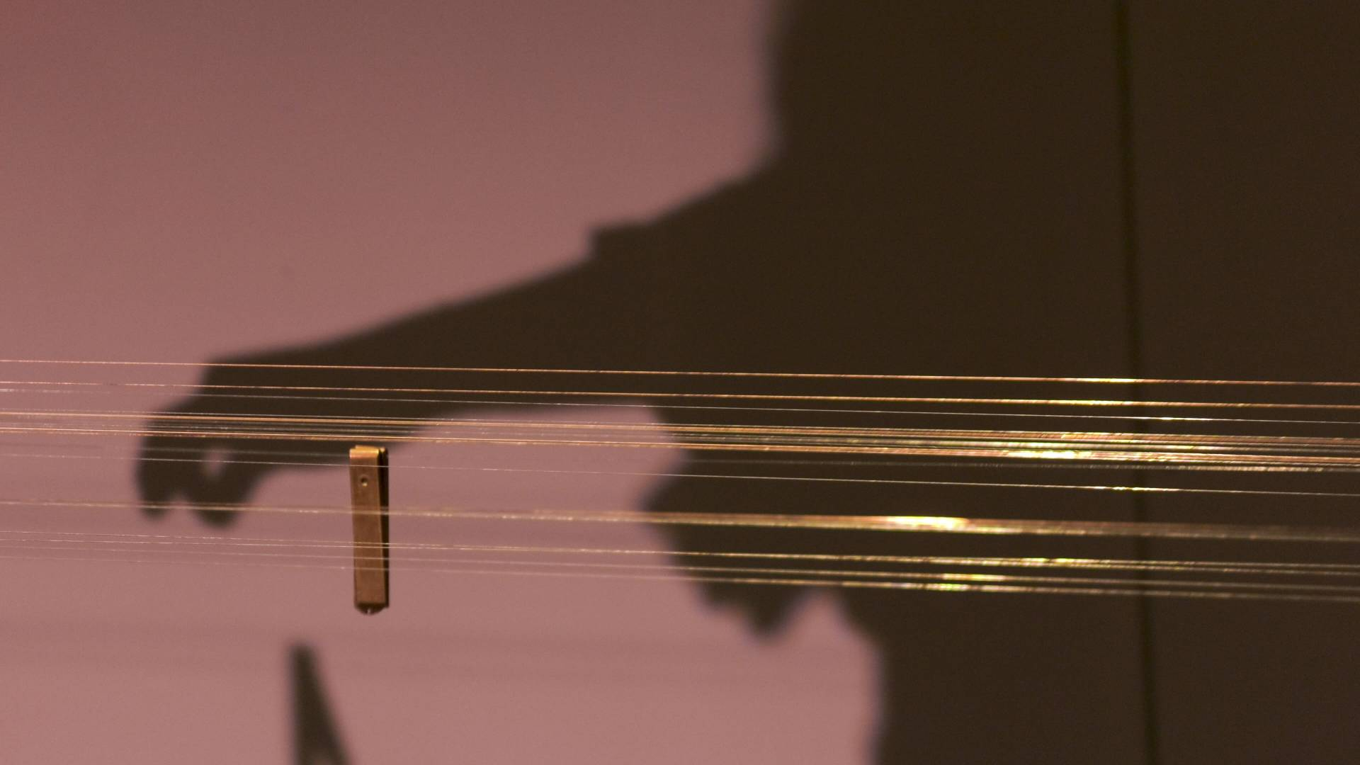 Rows of musical strings with shadow of hand plucking strings in the background