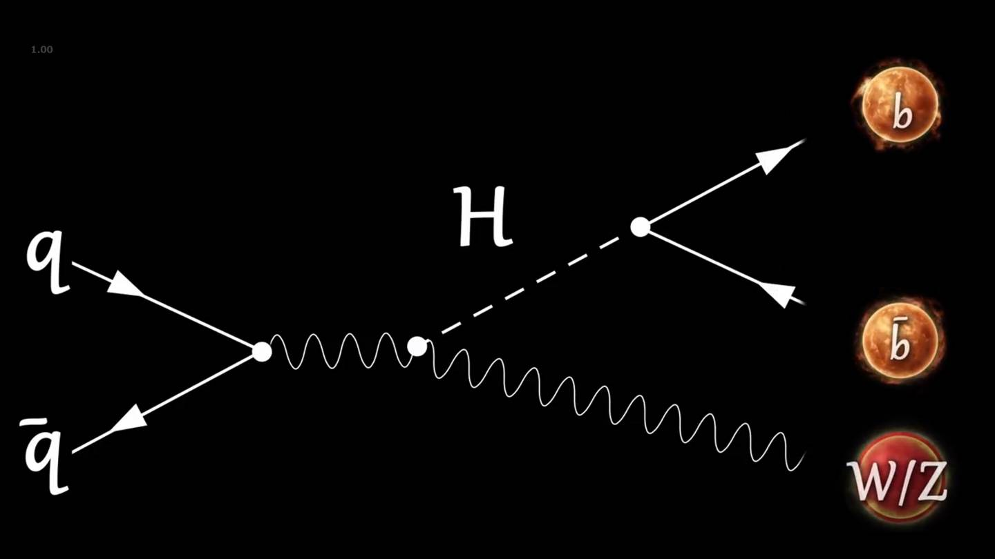 A diagram showing how two protons (q)  smash together to make a W or Z boson (W/Z) and a Higgs that then decays to two bottom quarks