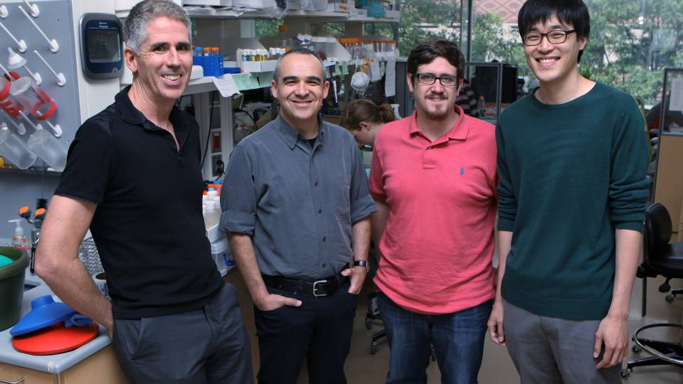 Joshua Rabinowitz, Stanislav Shvartsman, Robert Marmion and Yonghyun Song