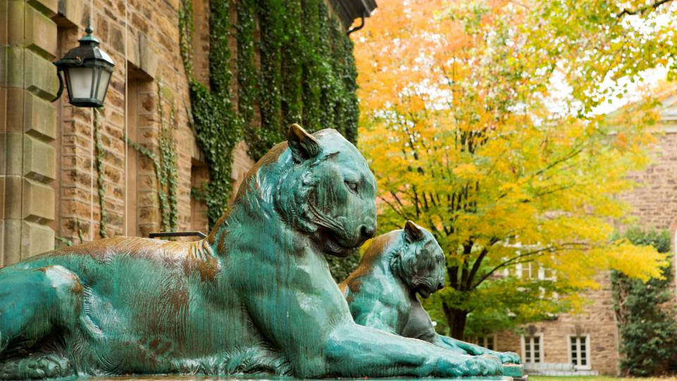 Bronze tigers outside Nassau Hall