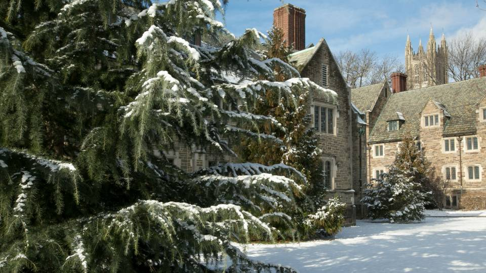 Campus dorms and pine tree in snow