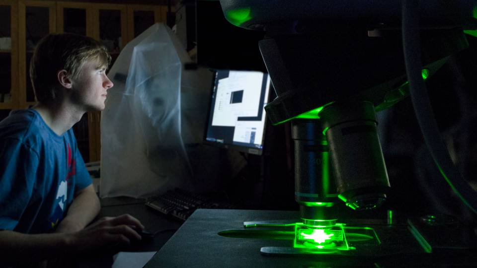 Student at computer with green light coming from microscope