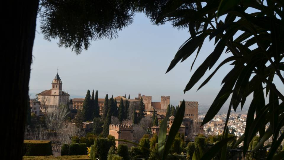"""Alhambra Through the Trees"" (Granada, Spain)"