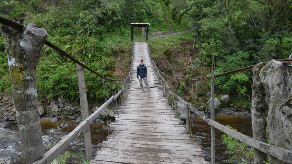 Jordan Salama standing on a wooden bridge