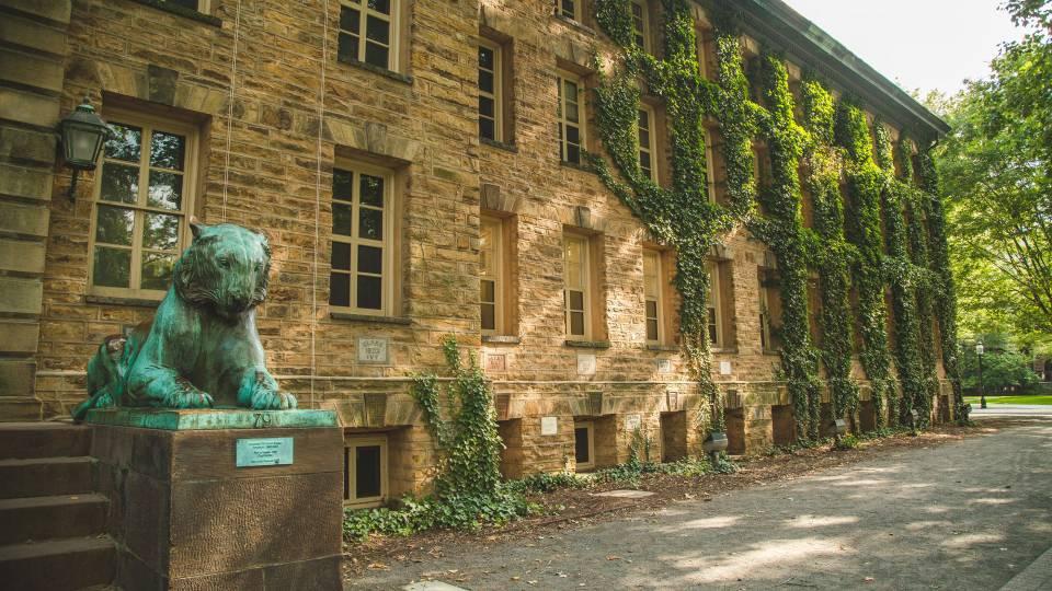 Princeton Università dating scena
