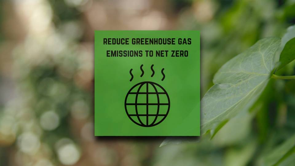 Reducing greenhouse gas emissions to net zero