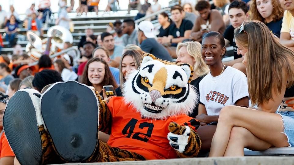 Tiger mascot hangs out with football fans