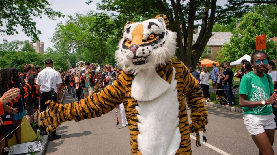 Tiger giving a high-five to a spectator at P-rade 2019