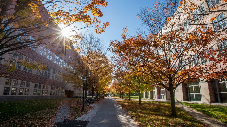 sunlight glints on autumnal campus scene