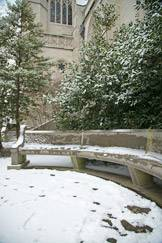 curved bench in snow