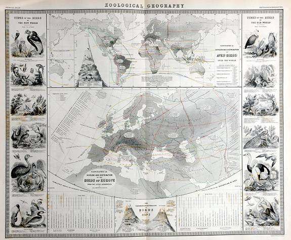 Thematic Maps Johnston