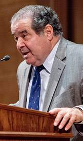 Scalia index