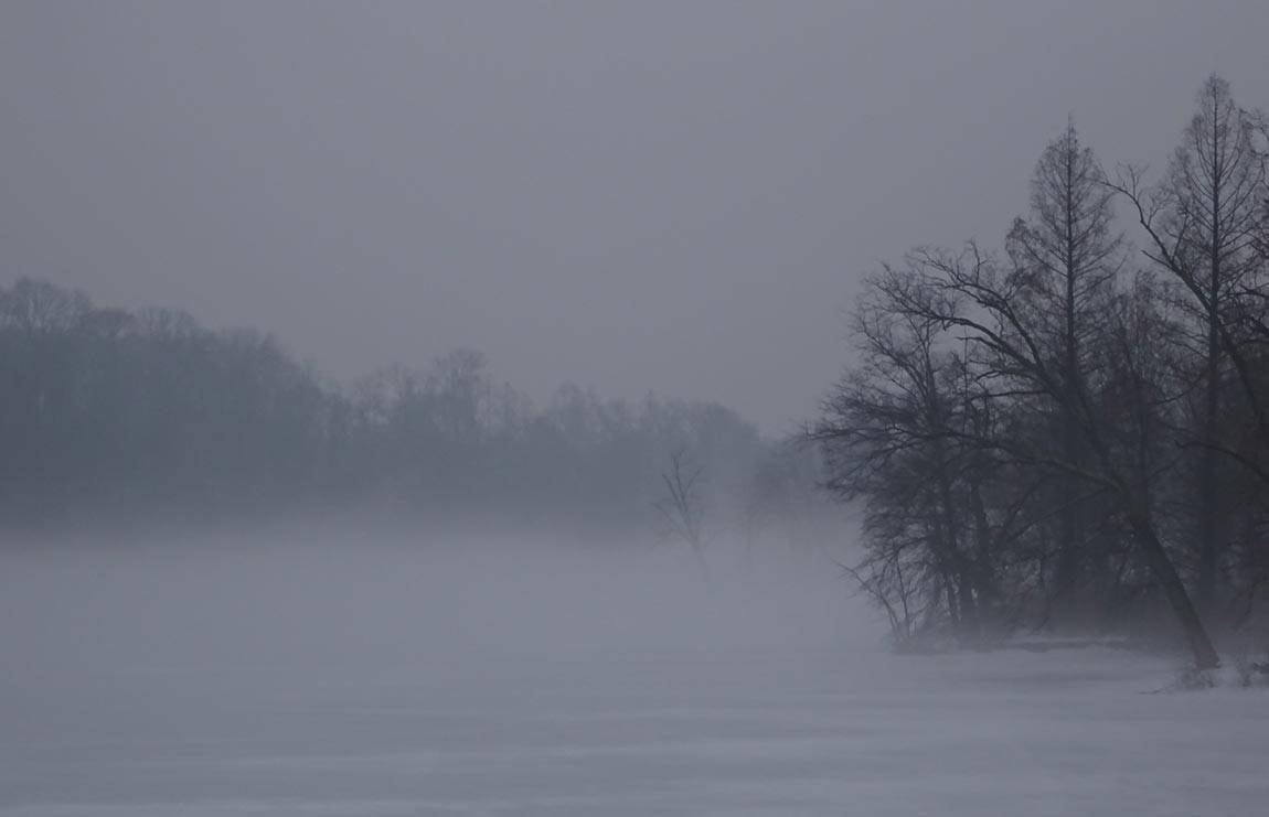 Lake Carnegie mist in winter