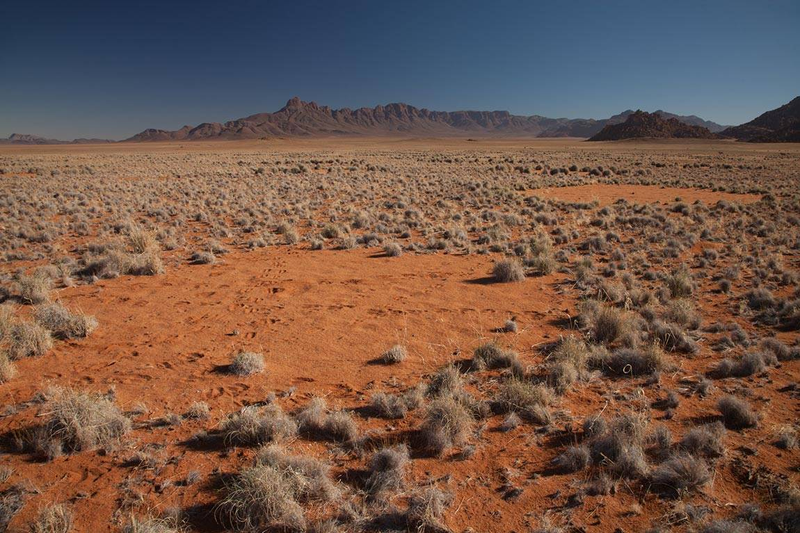 Close up of fairy circles in Namibia