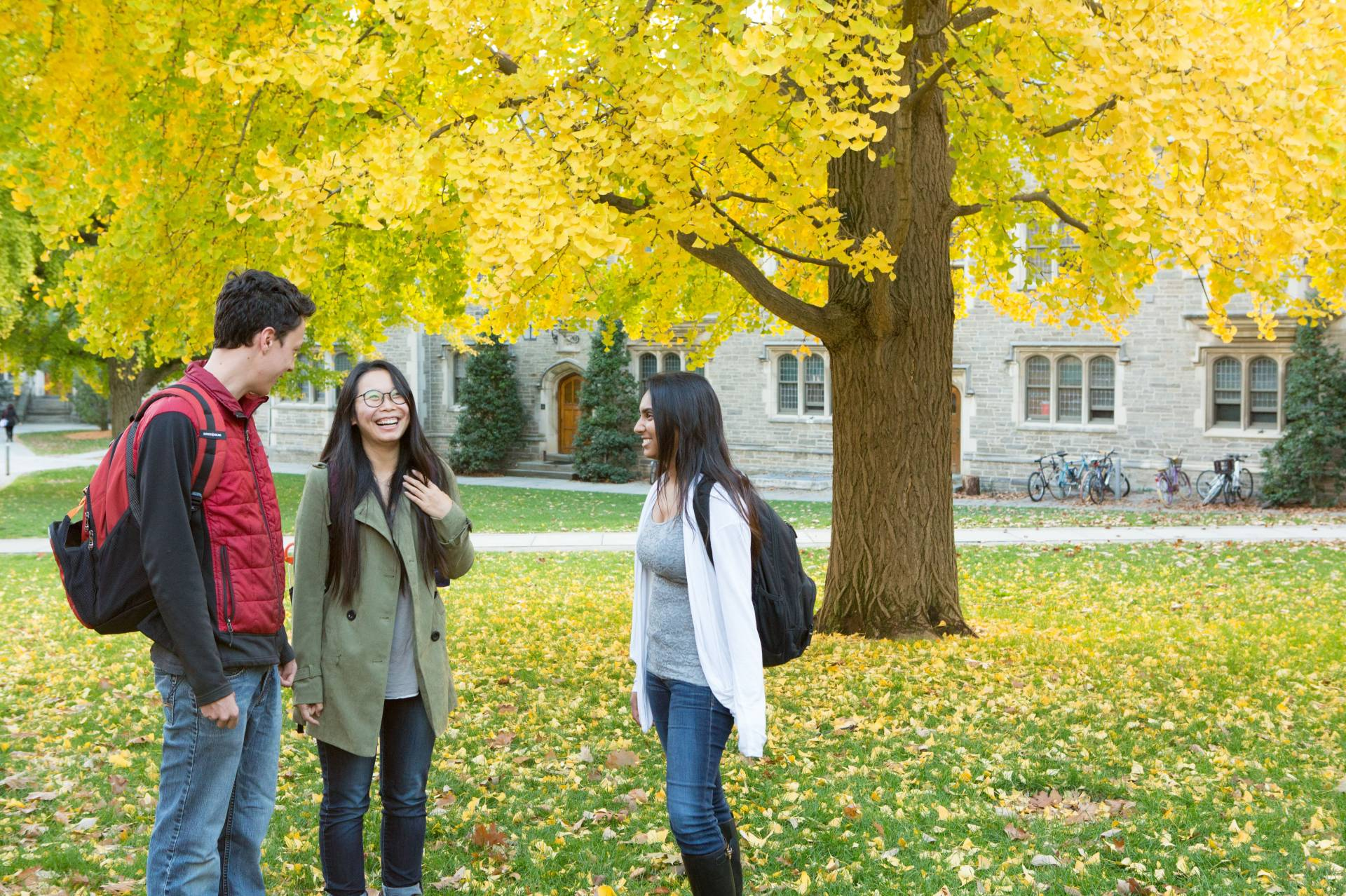 Students standing under a tree in the fall