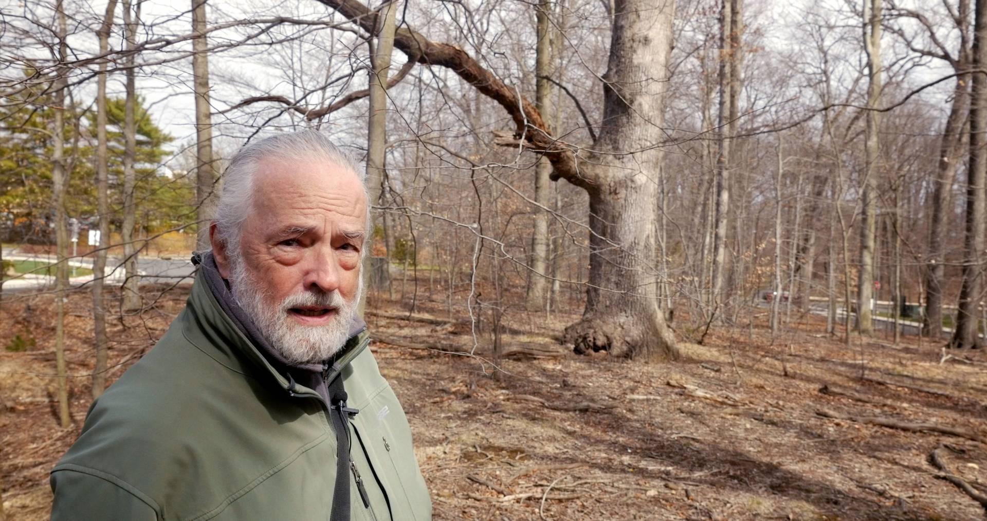 Ecologist Henry Horn, founding director of Program in