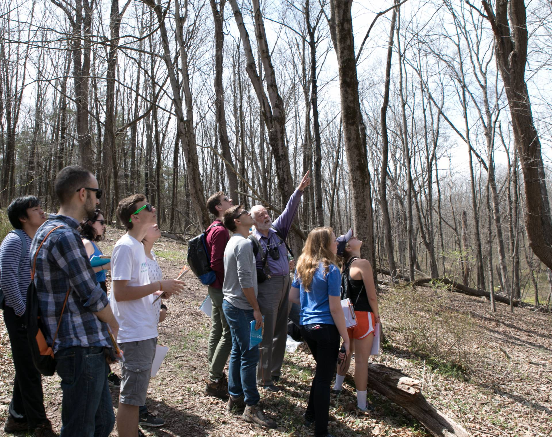 Students in forest looking at trees with Professor Horn
