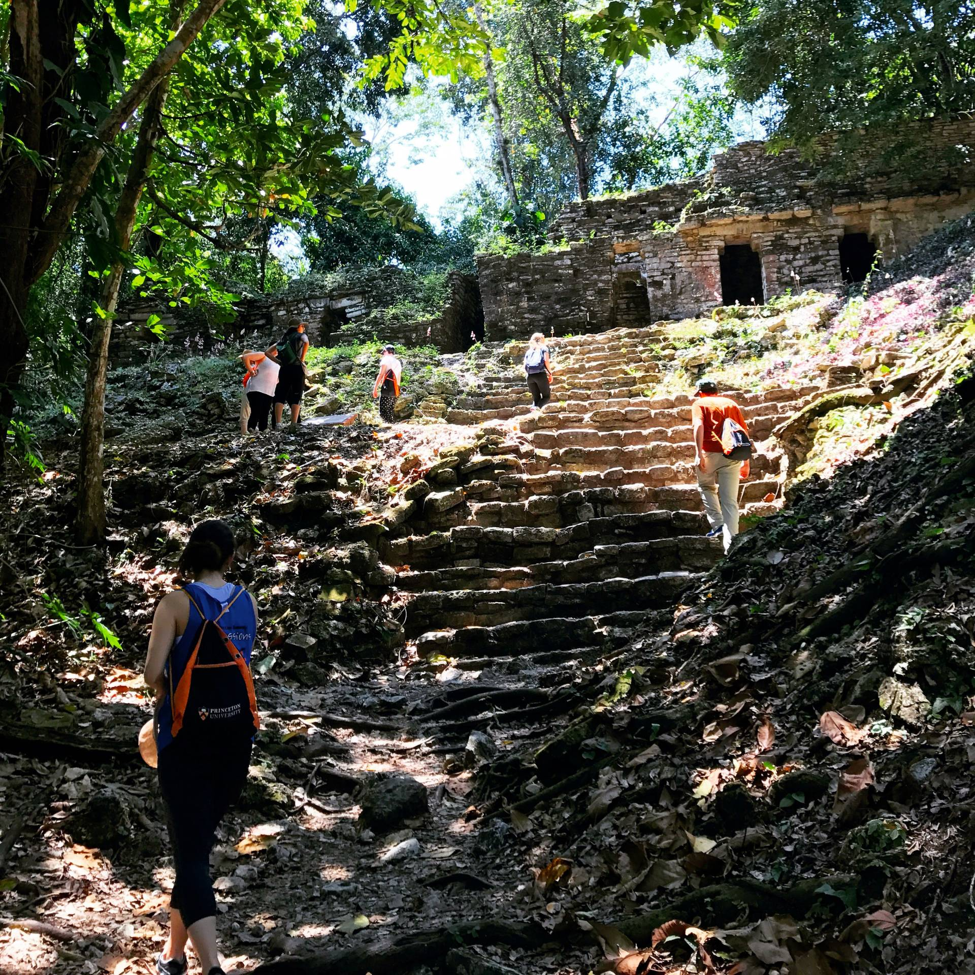 Students ascending the staircase from the main plaza at Yaxchilan to Temple 33