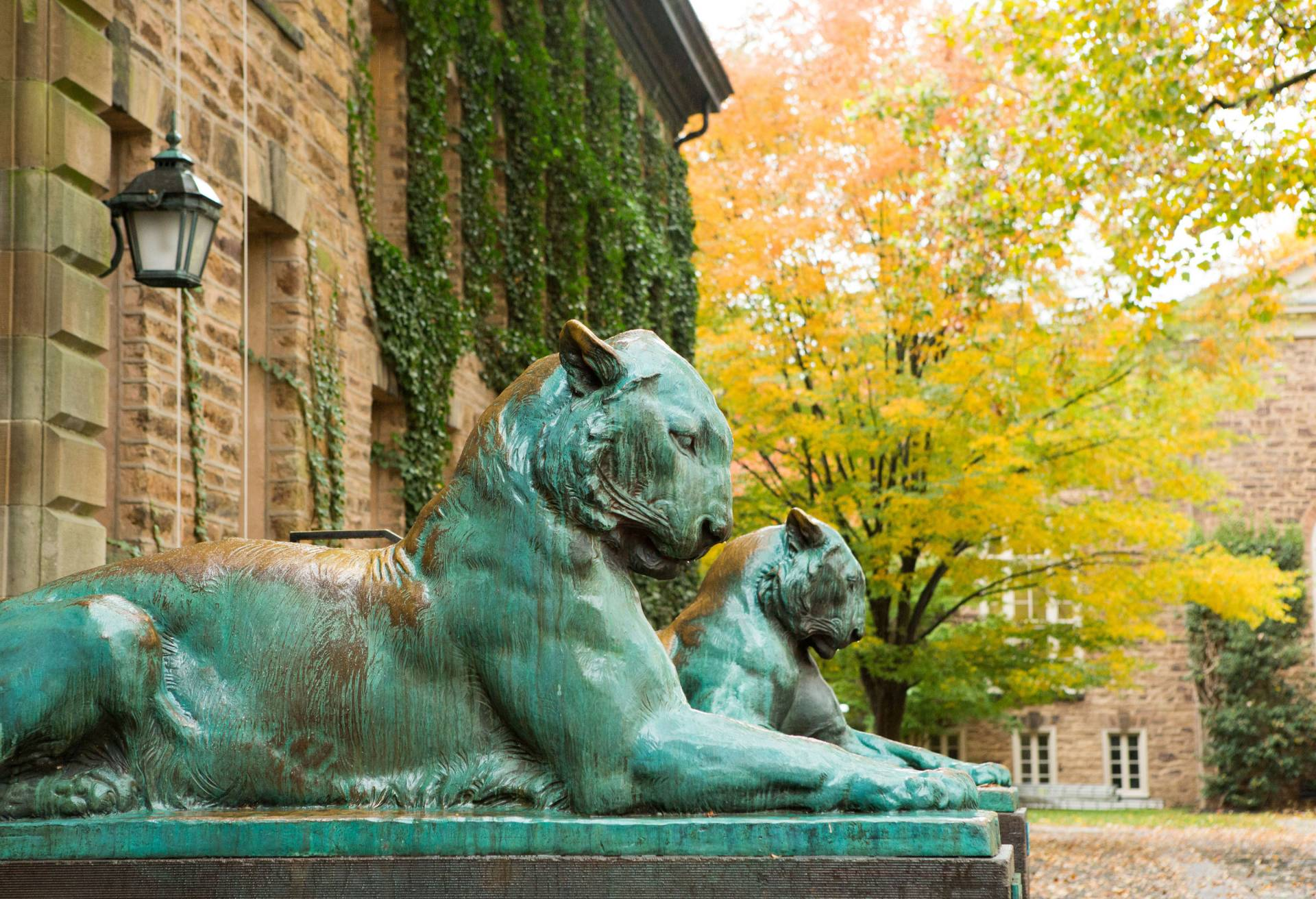 Tiger statues outside Nassau Hall
