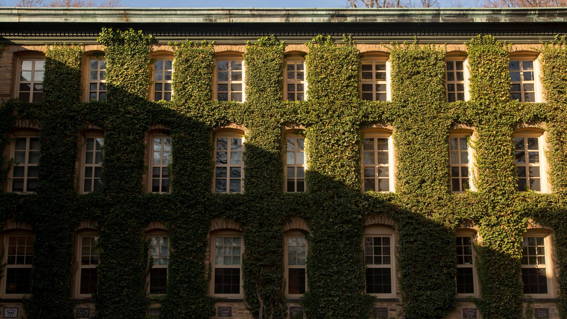 Nassau Hall windows and ivy