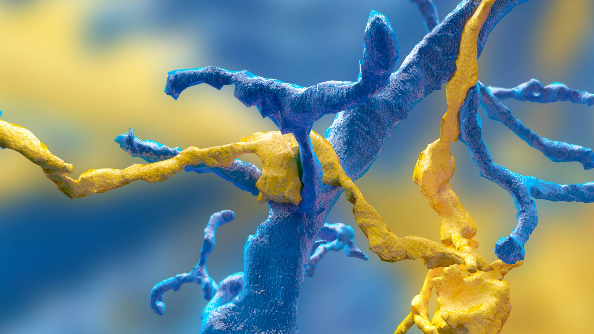 Synapse between a ganglion neuron (blue) and a starburst amacrine cell (yellow) mapped by Eyewire gamers.