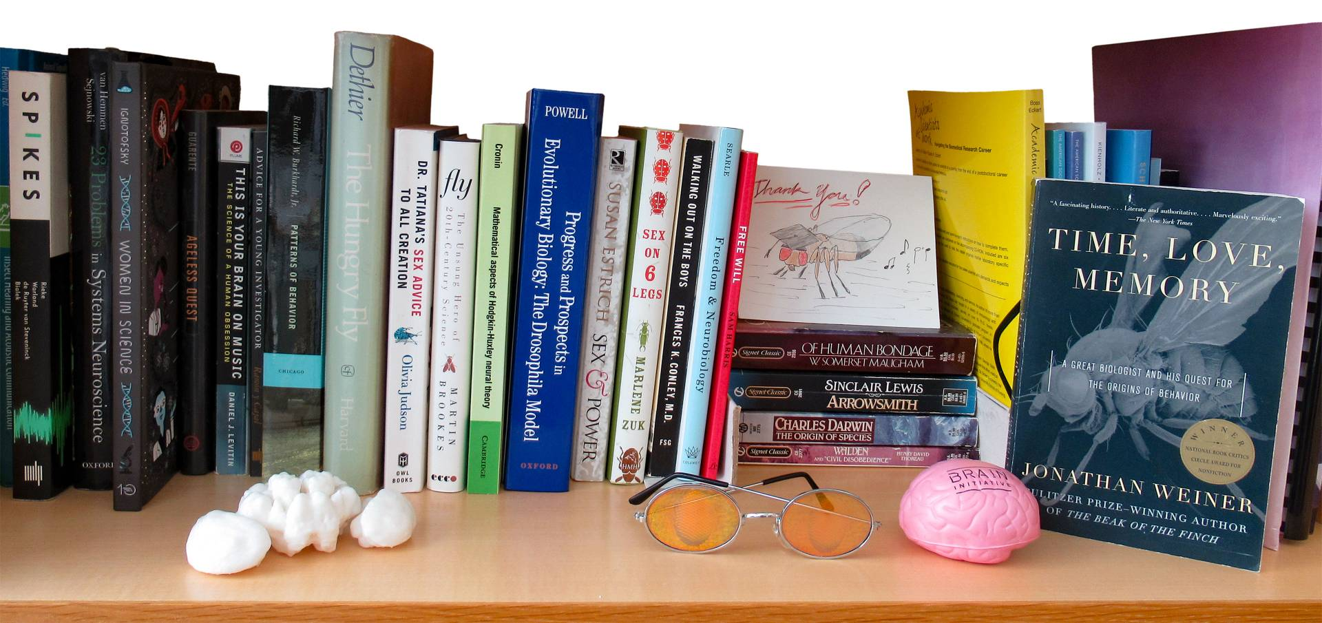 Books on Mala Murthy's bookshelf