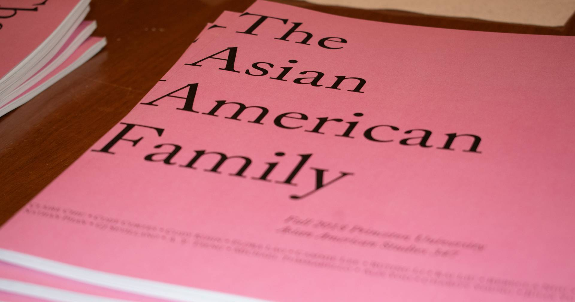 Close-up of pink covers of the Asian American Family zine