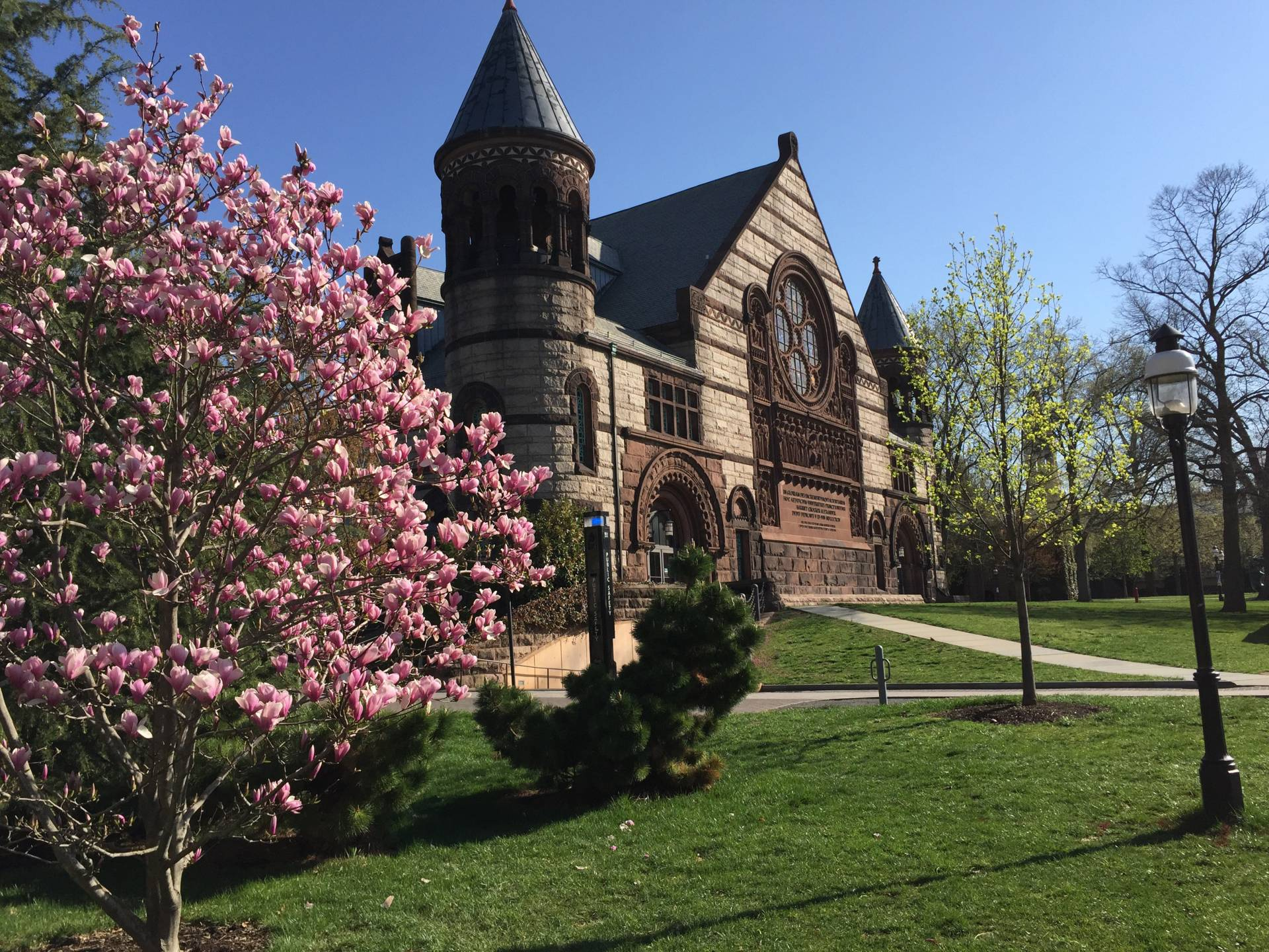 Alexander Hall in spring, with magnolias