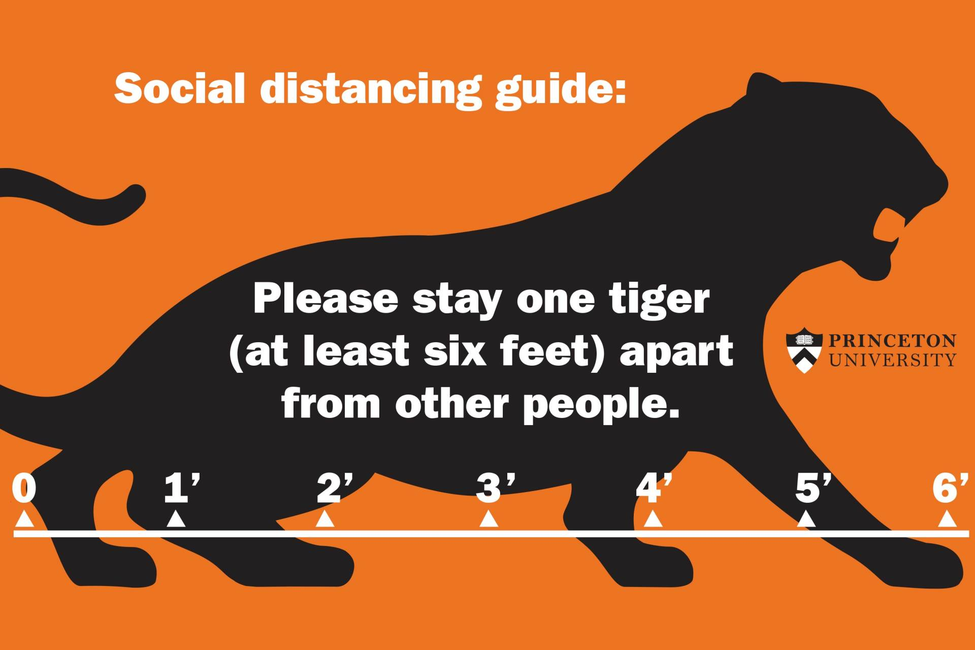 """""""Social distancing guide: Please stay one tiger (at least 6 feet) apart from other people"""""""