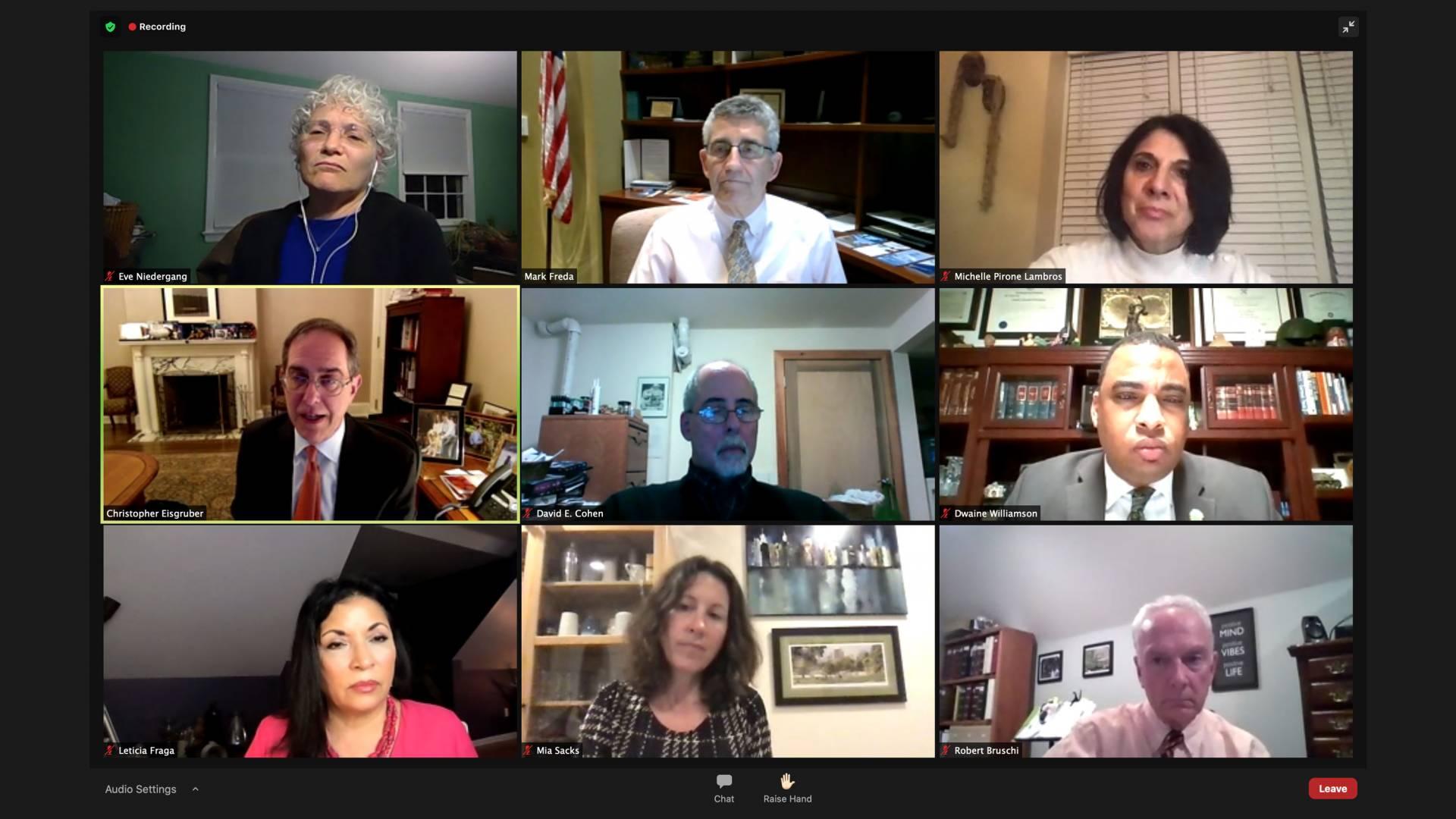 screenshot of attendees at Princeton Town Meeting