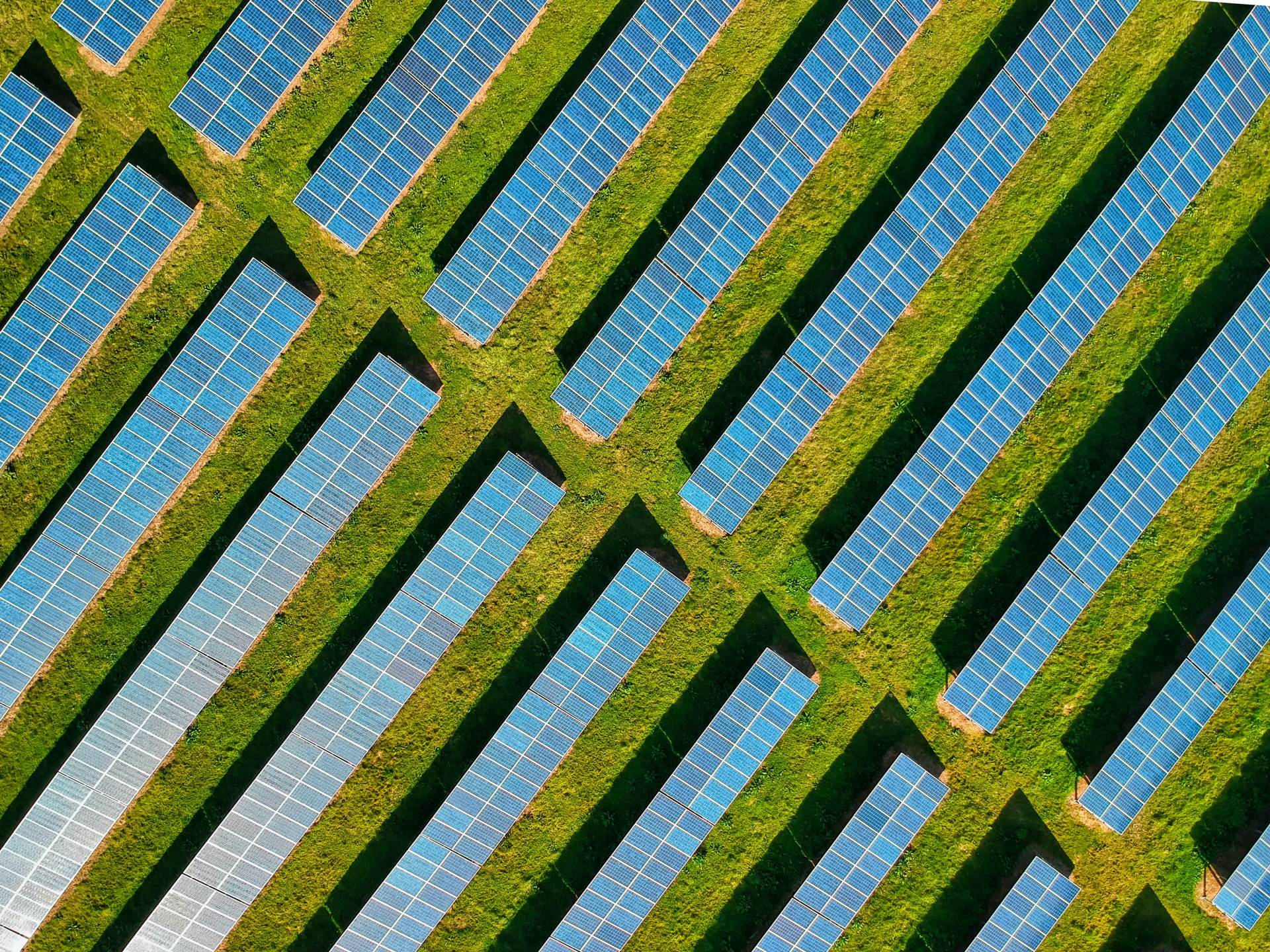 Aerial of solar panels in a field