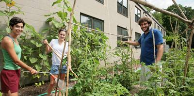 Schwab, Bonaccorsi and Elga tend the garden