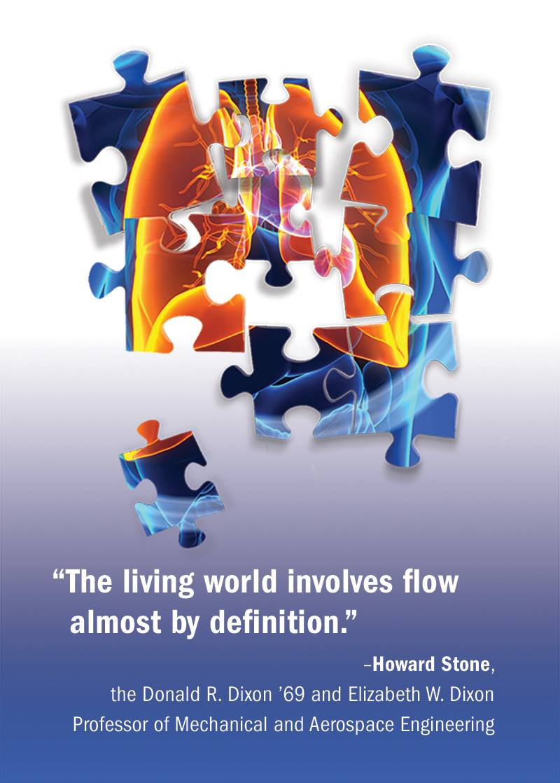 """The living world involves flow almost by definition.""  –Howard Stone,  the Donald R. Dixon '69 and Elizabeth W. Dixon Professor of Mechanical and Aerospace Engineering"