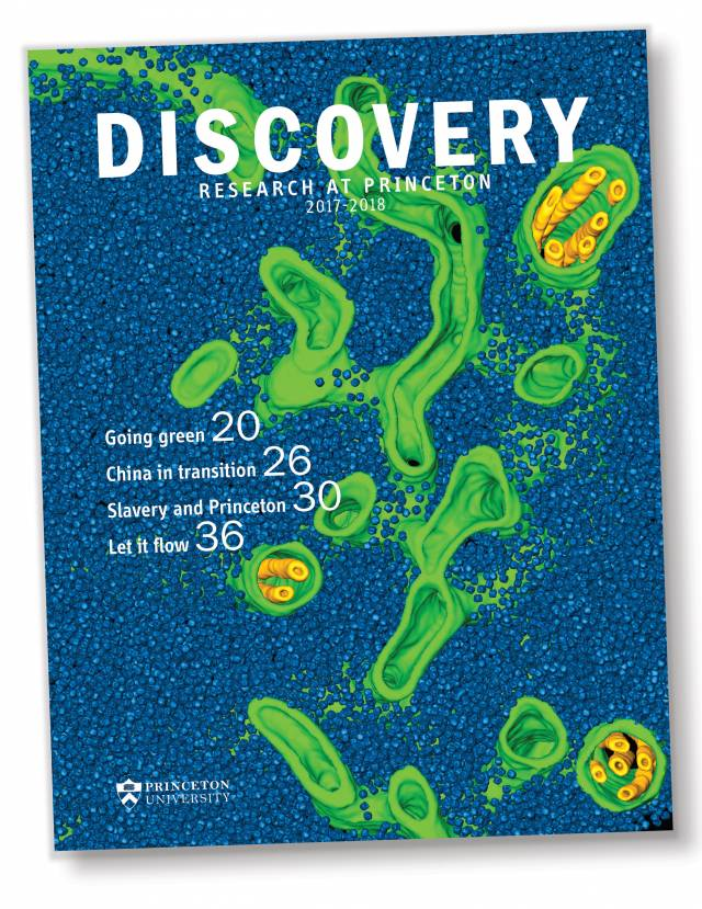 Cover of Discovery 2017 publication