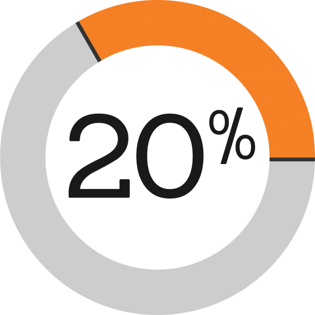 Pie graph showing 20%