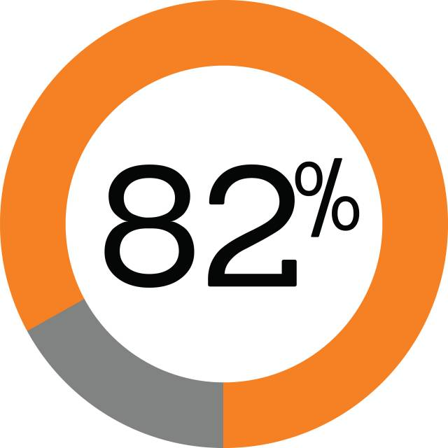 Pie graph showing 82%