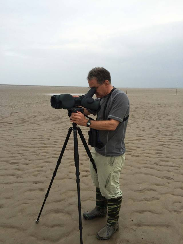 David Wilcove gathers data on a beach at low tide