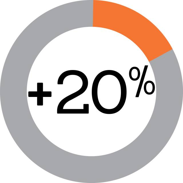 +20% and pie chart