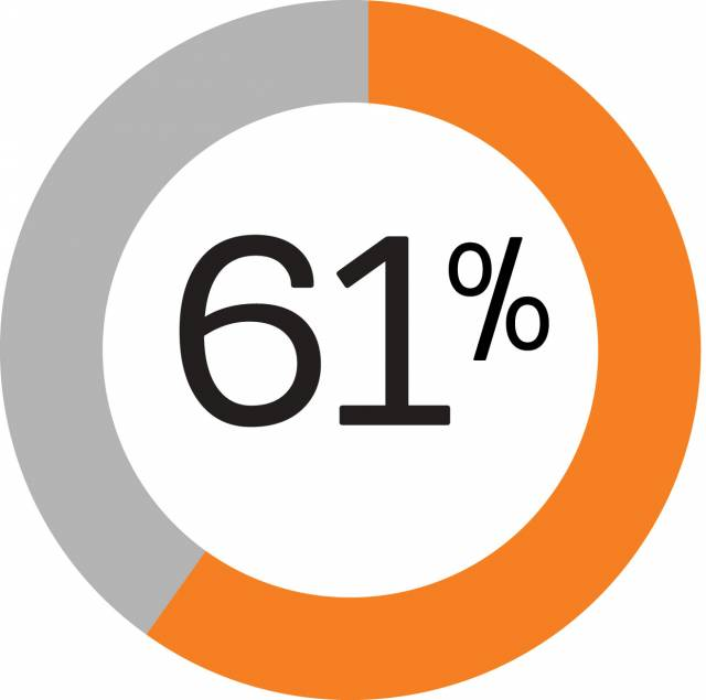 61% and a pie chart
