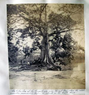 Photography album documenting the Morant Bay Rebellion, Jamaica ...